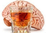 cerebro y consumo de alcohol